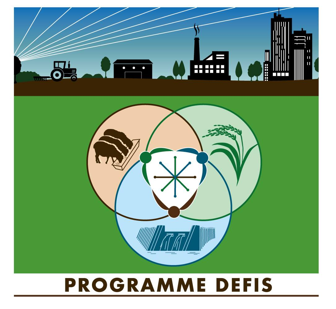 Programme DEFIS
